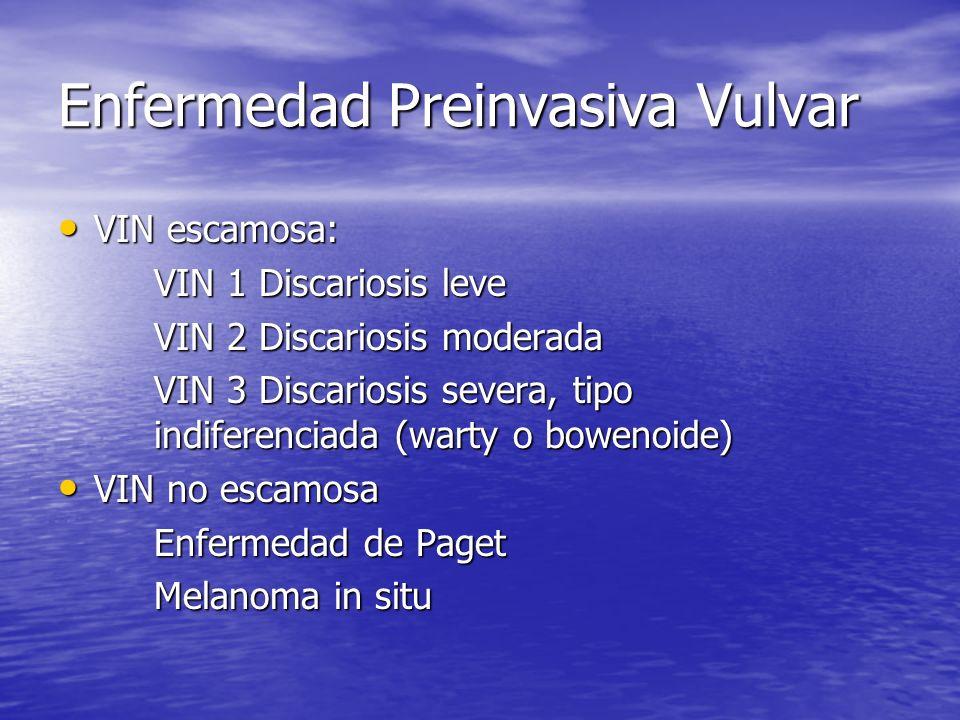 Enfermedad Preinvasiva Vulvar VIN escamosa: VIN escamosa: VIN 1 Discariosis leve VIN 2 Discariosis moderada VIN 3 Discariosis severa, tipo indiferenci