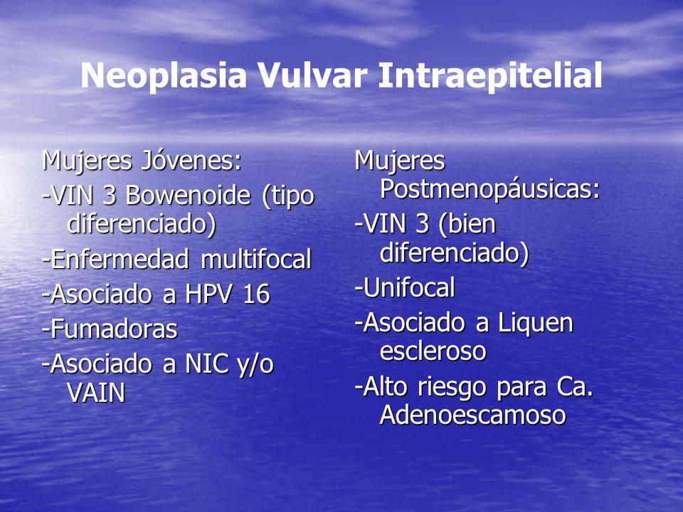 Neoplasia Vulvar Intraepitelial Mujeres Jóvenes: -VIN 3 Bowenoide (tipo diferenciado) -Enfermedad multifocal -Asociado a HPV 16 -Fumadoras -Asociado a