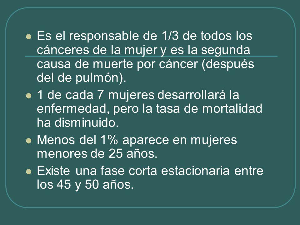 Es el responsable de 1/3 de todos los cánceres de la mujer y es la segunda causa de muerte por cáncer (después del de pulmón). 1 de cada 7 mujeres des