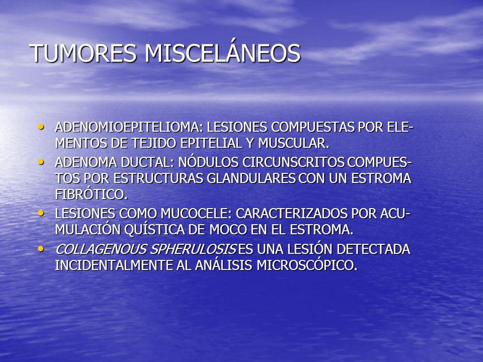TUMORES MISCELÁNEOS ADENOMIOEPITELIOMA: LESIONES COMPUESTAS POR ELE- MENTOS DE TEJIDO EPITELIAL Y MUSCULAR. ADENOMIOEPITELIOMA: LESIONES COMPUESTAS PO