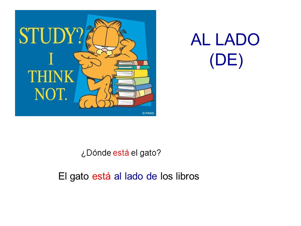 AL LADO (DE) ¿Dónde está el gato? El gato está al lado de los libros