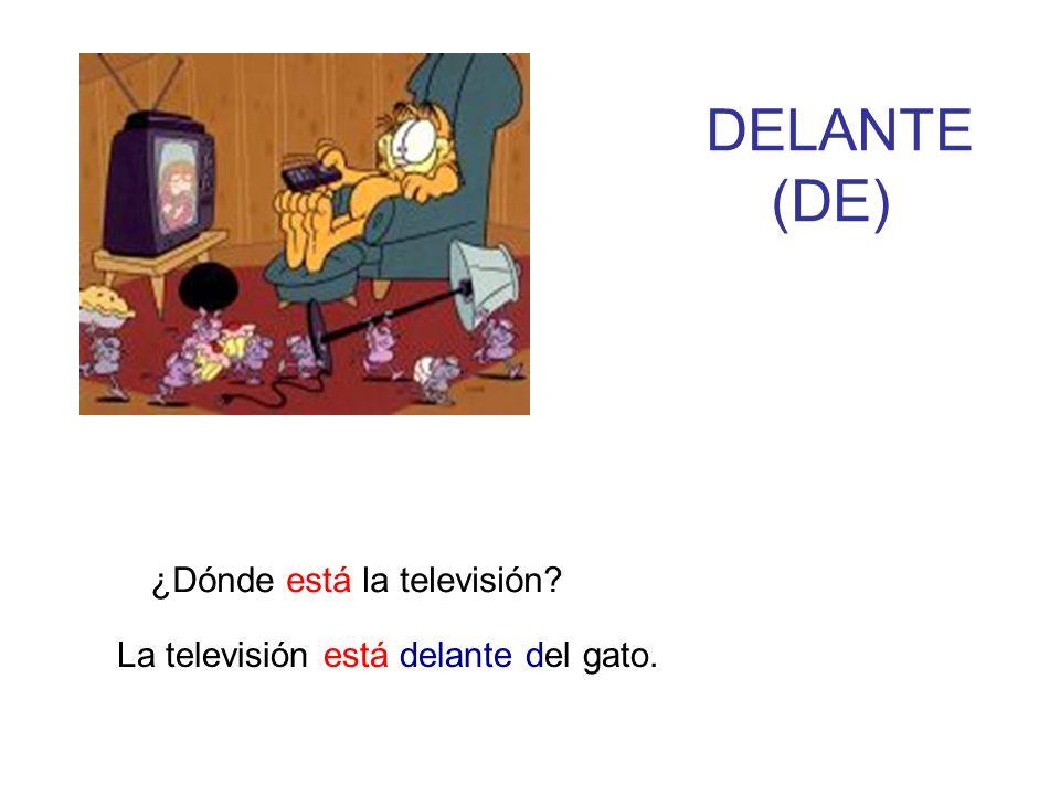 DELANTE (DE) ¿Dónde está la televisión? La televisión está delante del gato.