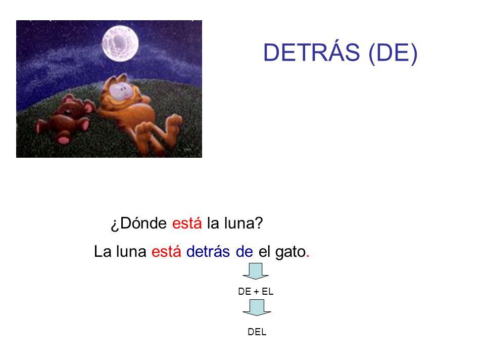 DETRÁS (DE) ¿Dónde está la luna? DE + EL DEL La luna está detrás de el gato.