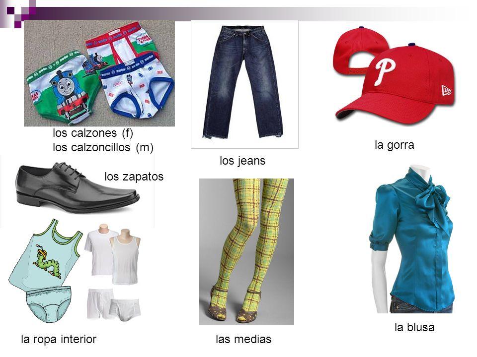 los calzones (f) los calzoncillos (m) los jeans la gorra los zapatos la ropa interior la blusa las medias