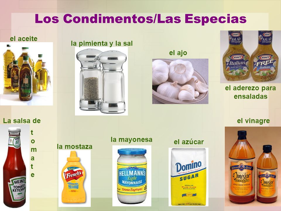 Los Condimentos/Las Especias el aceite la pimienta y la sal el ajo el aderezo para ensaladas el vinagre el azúcar la mayonesa la mostaza La salsa de t