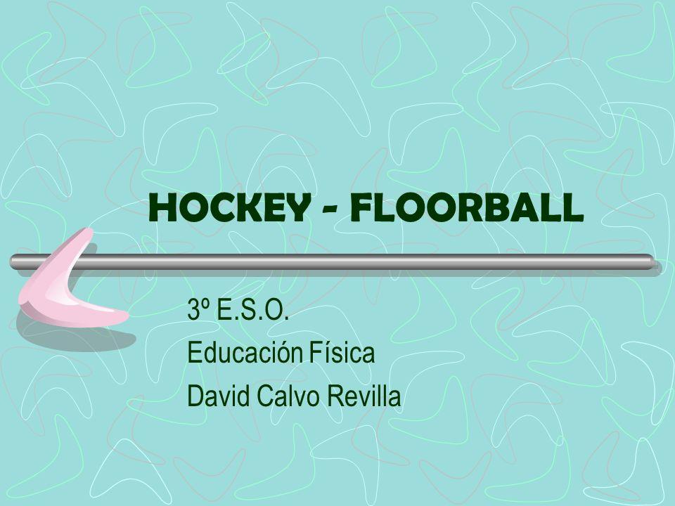 HOCKEY - FLOORBALL 3º E.S.O. Educación Física David Calvo Revilla
