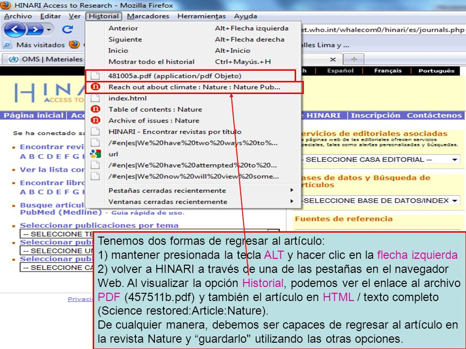 Tenemos dos formas de regresar al artículo: 1) mantener presionada la tecla ALT y hacer clic en la flecha izquierda 2) volver a HINARI a través de una