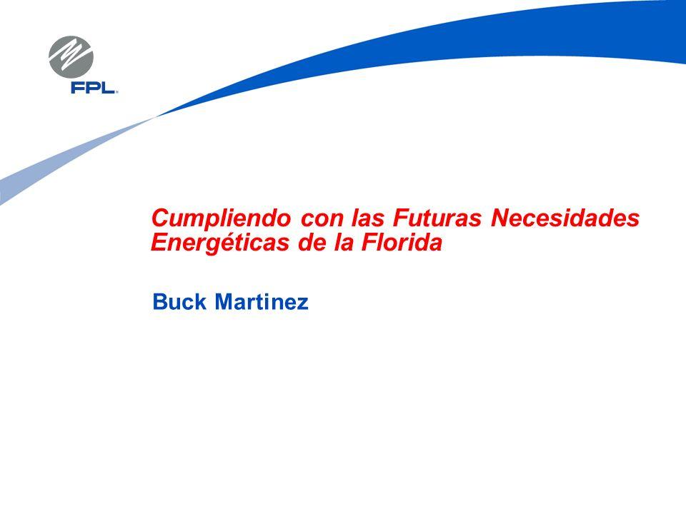 Cumpliendo con las Futuras Necesidades Energéticas de la Florida Buck Martinez