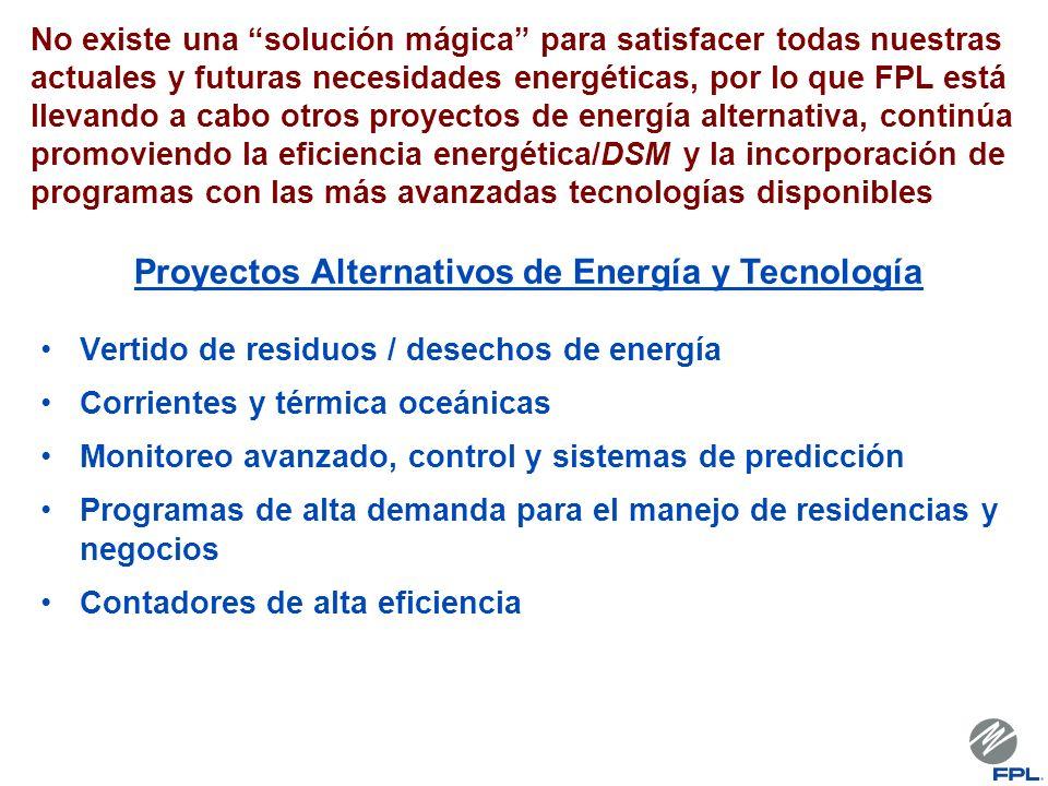 No existe una solución mágica para satisfacer todas nuestras actuales y futuras necesidades energéticas, por lo que FPL está llevando a cabo otros pro