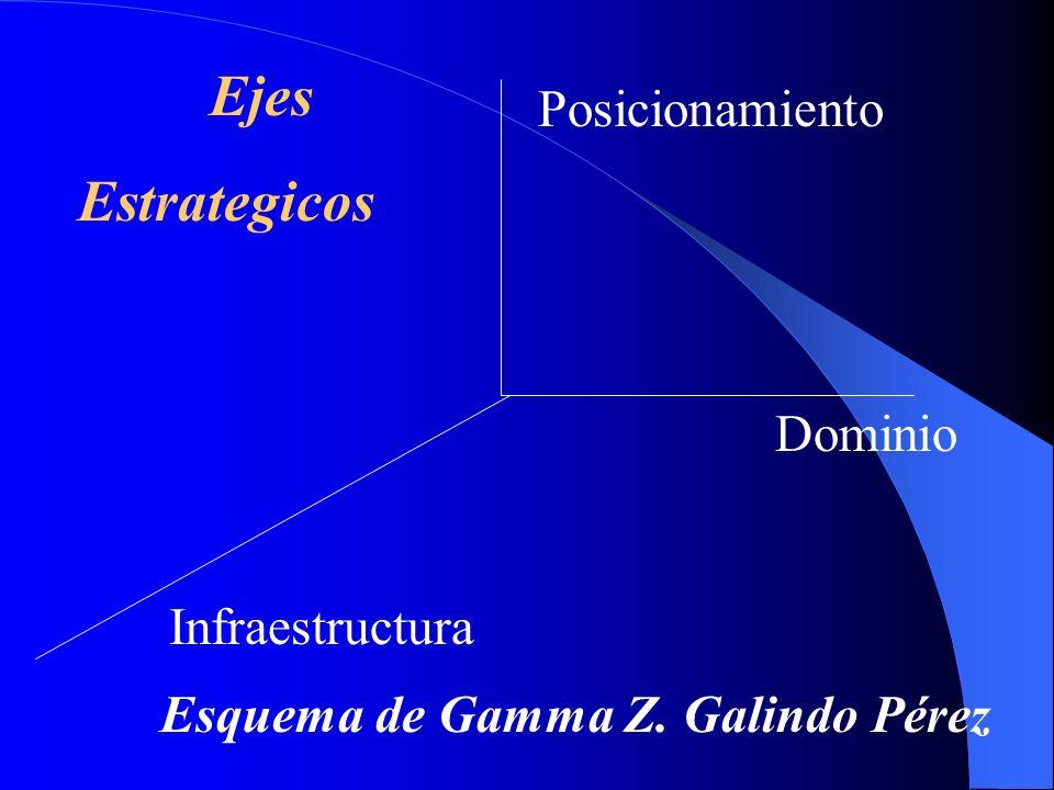 Dominio Posicionamiento Infraestructura Esquema de Gamma Z. Galindo Pérez Ejes Estrategicos