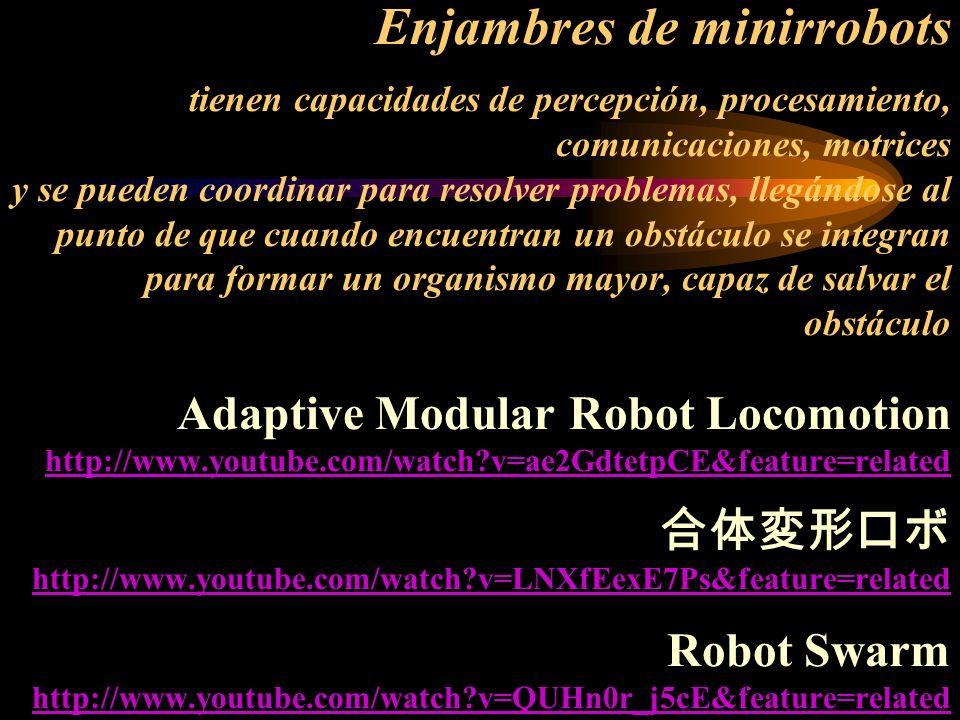 Enjambres de minirrobots tienen capacidades de percepción, procesamiento, comunicaciones, motrices y se pueden coordinar para resolver problemas, lleg