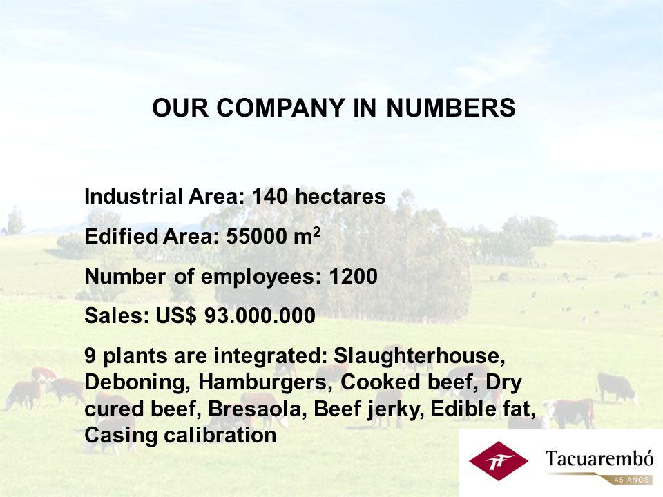 PRINCIPALES CARACTERÍSTICAS: Predio industrial: 140 hás.