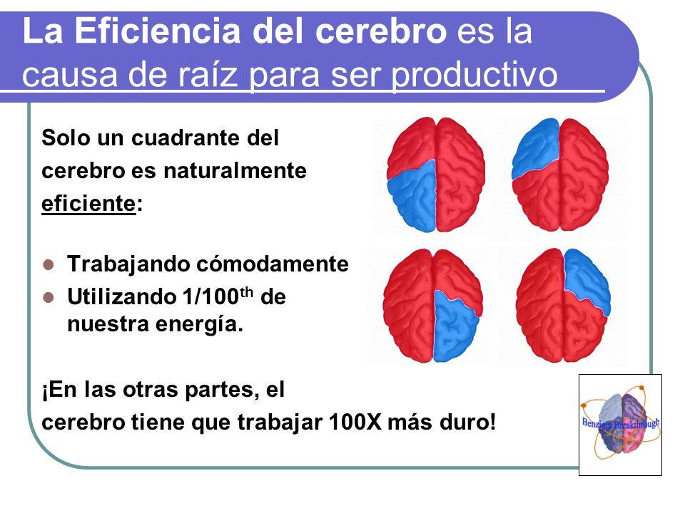 La Eficiencia del cerebro es la causa de raíz para ser productivo Solo un cuadrante del cerebro es naturalmente eficiente: Trabajando cómodamente Util