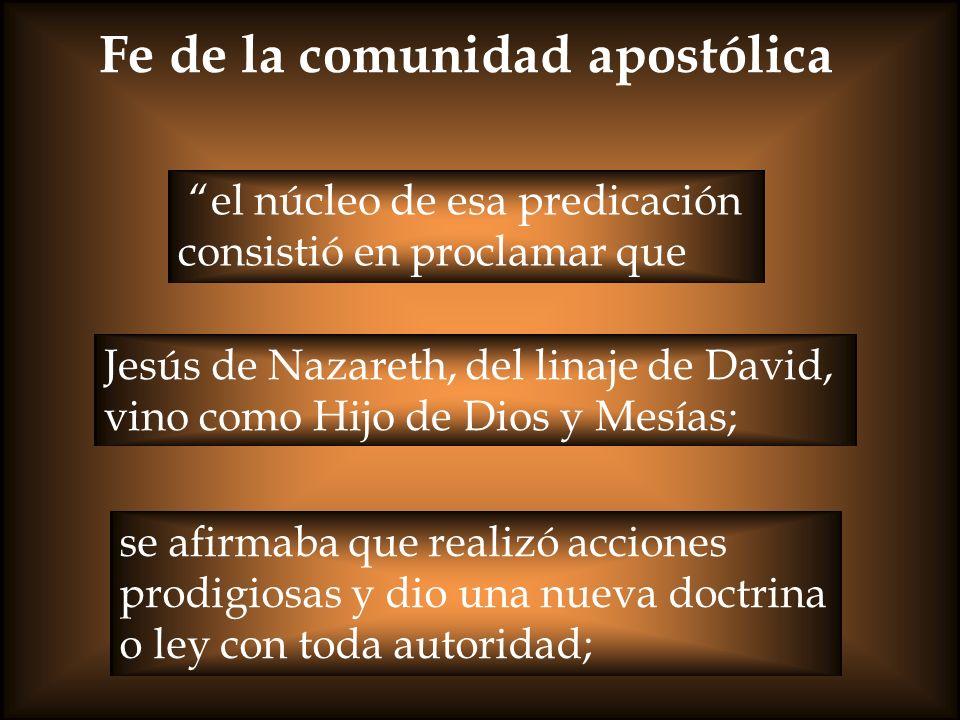 Fe de la comunidad apostólica el núcleo de esa predicación consistió en proclamar que Jesús de Nazareth, del linaje de David, vino como Hijo de Dios y