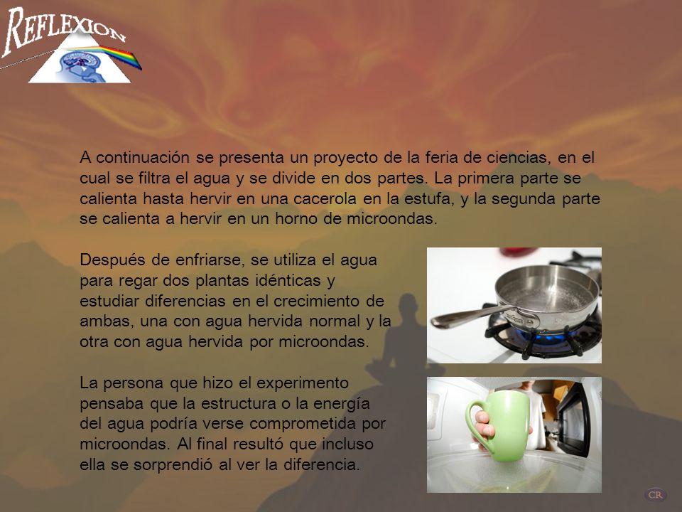 Actualmente vendedores y fabricantes insisten en señalar que los hornos de microondas no producen fugas en el medioambiente cuando se usan adecuadamen