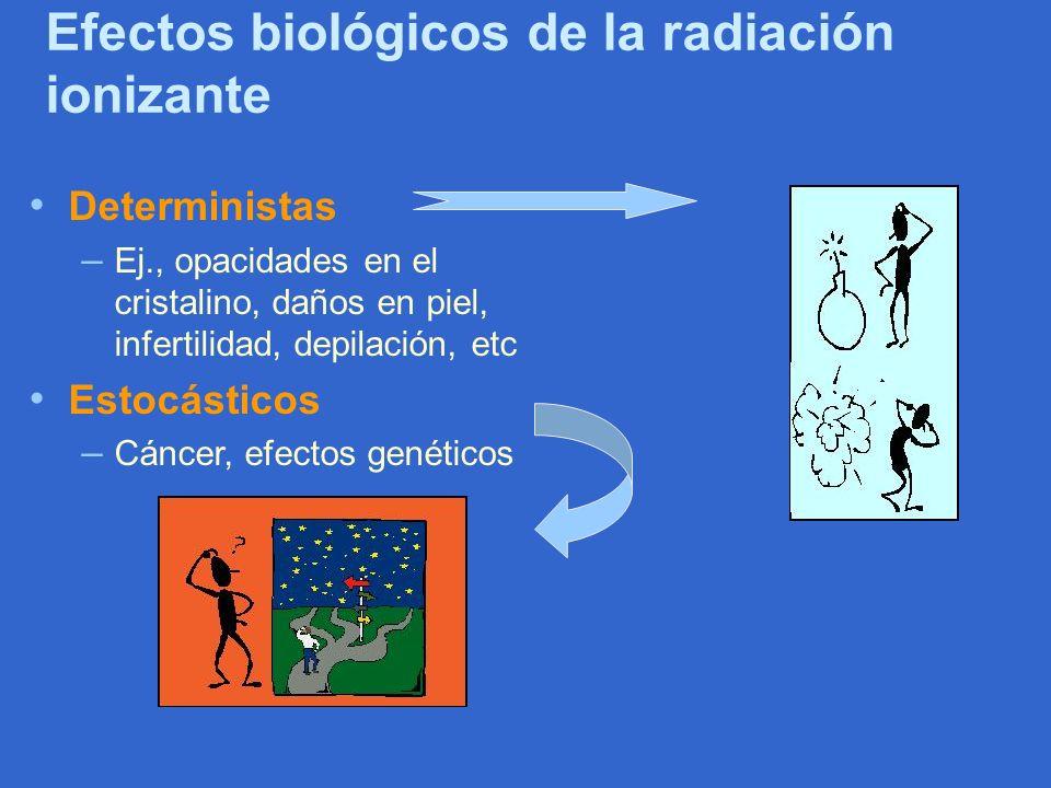 Efectos biológicos de la radiación ionizante Deterministas – Ej., opacidades en el cristalino, daños en piel, infertilidad, depilación, etc Estocástic