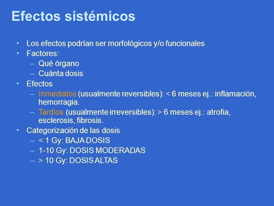 Efectos sistémicos Los efectos podrían ser morfológicos y/o funcionales Factores: – Qué órgano – Cuánta dosis Efectos – Inmediatos (usualmente reversi