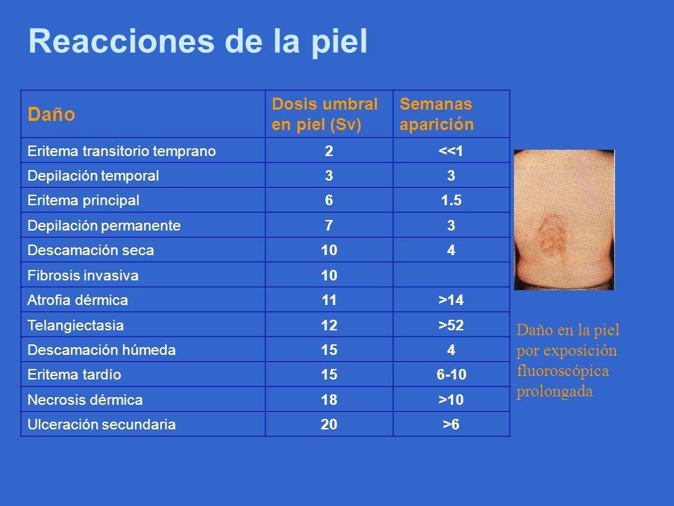Reacciones de la piel Daño en la piel por exposición fluoroscópica prolongada Daño Dosis umbral en piel (Sv) Semanas aparición Eritema transitorio tem