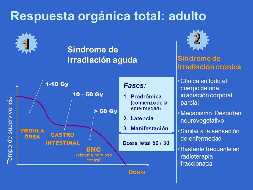 Respuesta orgánica total: adulto Síndrome de irradiación aguda Tempo de supervivencia Dosis Fases: 1.Prodrómica (comienzo de la enfermedad) 2.Latencia