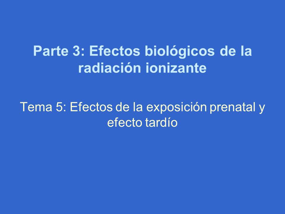 Parte 3: Efectos biológicos de la radiación ionizante Tema 5: Efectos de la exposición prenatal y efecto tardío