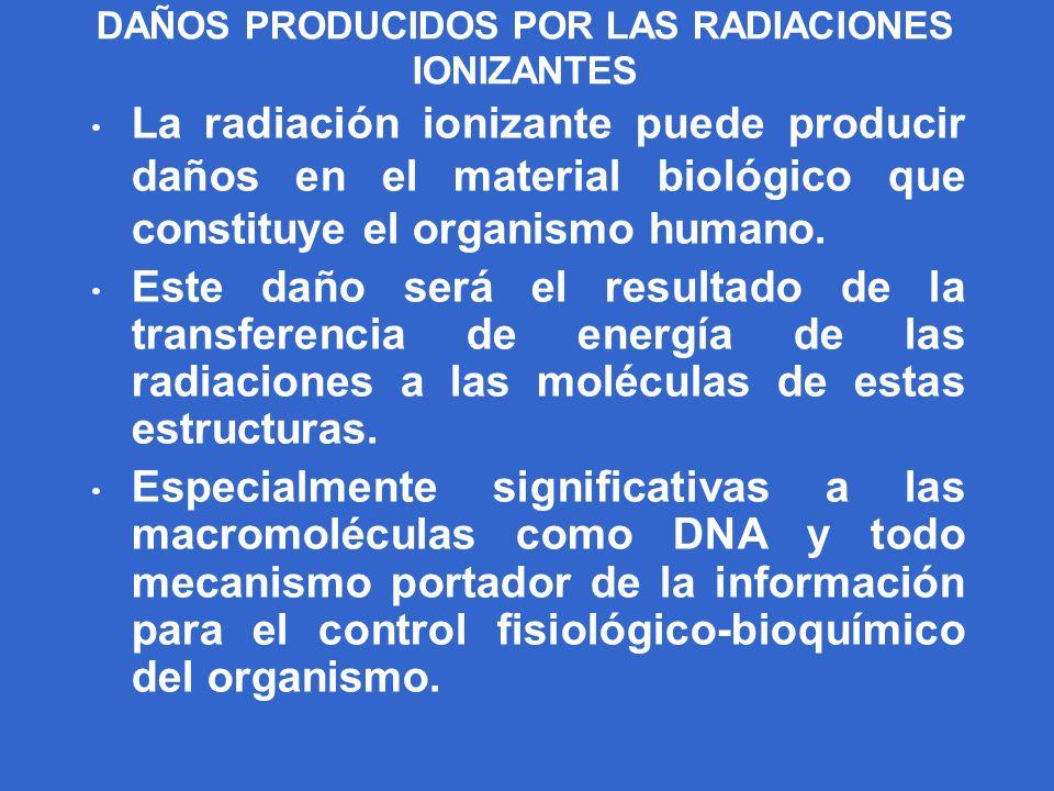 DAÑOS PRODUCIDOS POR LAS RADIACIONES IONIZANTES La radiación ionizante puede producir daños en el material biológico que constituye el organismo human