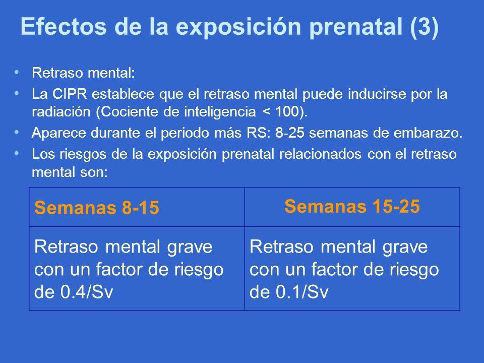Efectos de la exposición prenatal (3) Retraso mental: La CIPR establece que el retraso mental puede inducirse por la radiación (Cociente de inteligenc