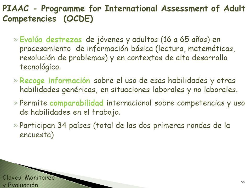 PIAAC - Programme for International Assessment of Adult Competencies (OCDE) » Evalúa destrezas de jóvenes y adultos (16 a 65 años) en procesamiento de