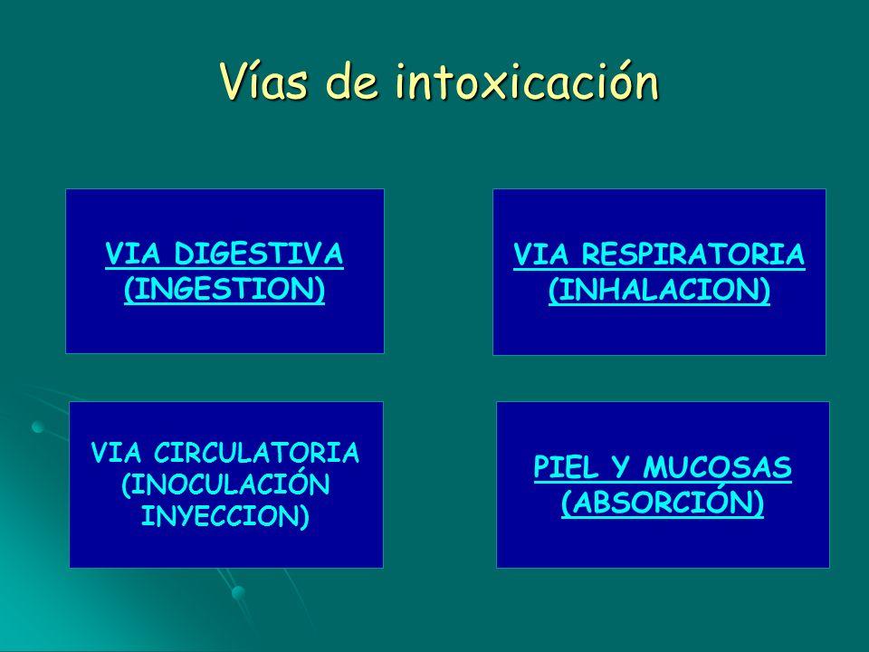 Vías de intoxicación VIA DIGESTIVA (INGESTION) VIA RESPIRATORIA (INHALACION) PIEL Y MUCOSAS (ABSORCIÓN) VIA CIRCULATORIA (INOCULACIÓN INYECCION)