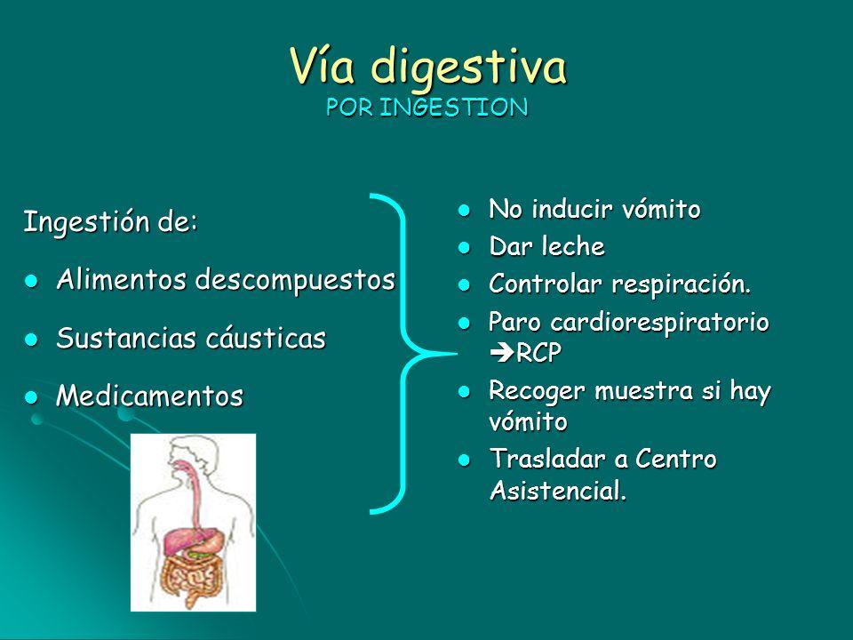 Vía digestiva POR INGESTION Ingestión de: Alimentos descompuestos Alimentos descompuestos Sustancias cáusticas Sustancias cáusticas Medicamentos Medic