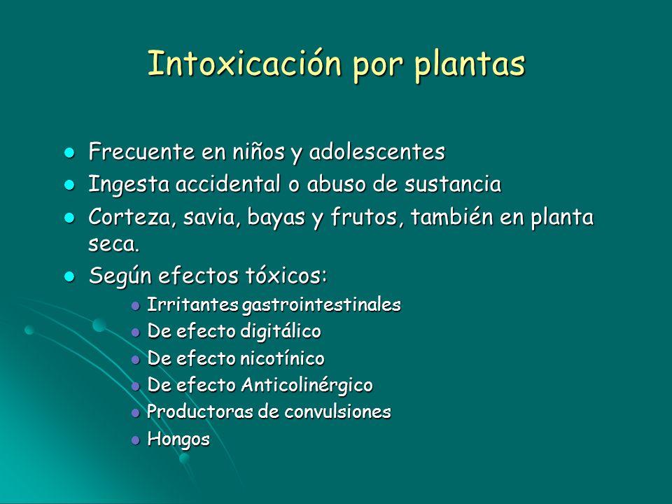Intoxicación por plantas Frecuente en niños y adolescentes Frecuente en niños y adolescentes Ingesta accidental o abuso de sustancia Ingesta accidenta