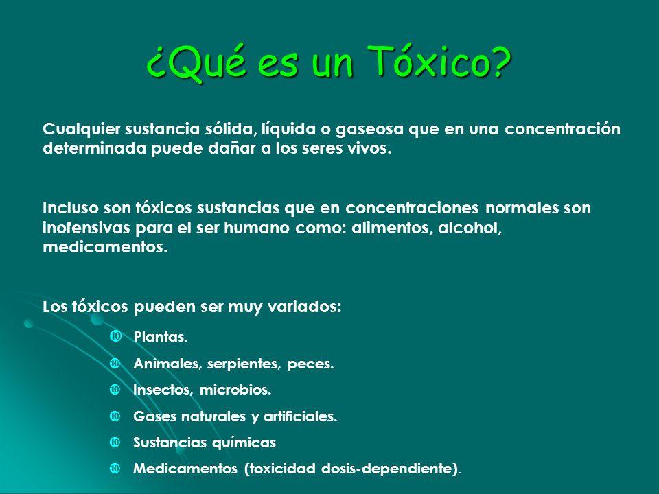 ¿Qué es un Tóxico? Cualquier sustancia sólida, líquida o gaseosa que en una concentración determinada puede dañar a los seres vivos. Incluso son tóxic
