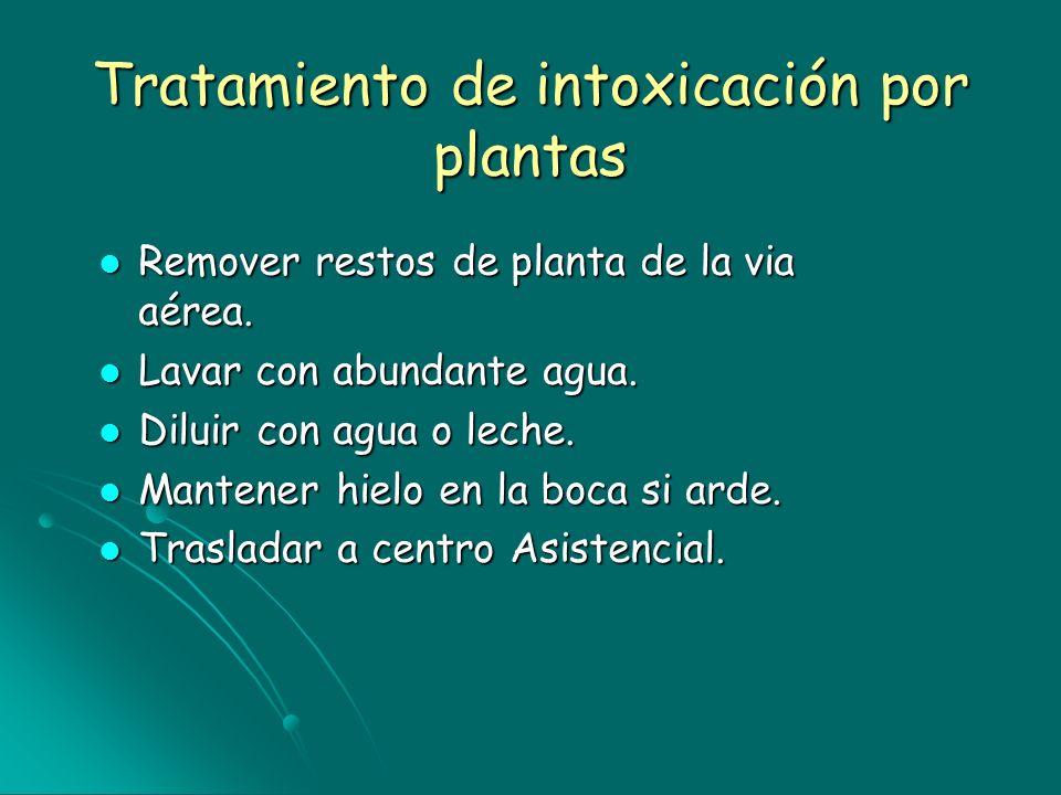 Tratamiento de intoxicación por plantas Remover restos de planta de la via aérea. Remover restos de planta de la via aérea. Lavar con abundante agua.