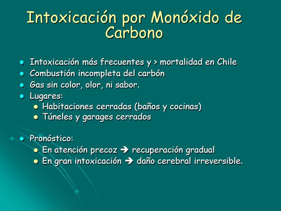 Intoxicación por Monóxido de Carbono Intoxicación más frecuentes y > mortalidad en Chile Intoxicación más frecuentes y > mortalidad en Chile Combustió