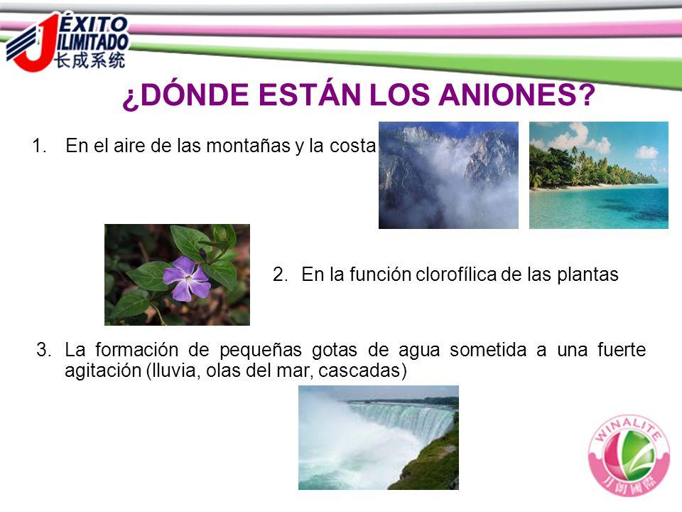 ¿DÓNDE ESTÁN LOS ANIONES? 2.En la función clorofílica de las plantas 3.La formación de pequeñas gotas de agua sometida a una fuerte agitación (lluvia,
