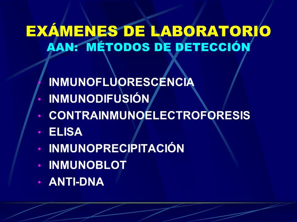 EXÁMENES DE LABORATORIO AAN: MÉTODOS DE DETECCIÓN INMUNOFLUORESCENCIA INMUNODIFUSIÓN CONTRAINMUNOELECTROFORESIS ELISA INMUNOPRECIPITACIÓN INMUNOBLOT A