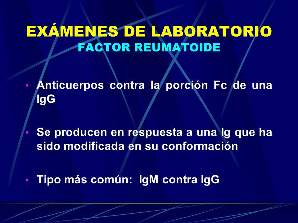 EXÁMENES DE LABORATORIO FACTOR REUMATOIDE Anticuerpos contra la porción Fc de una IgG Se producen en respuesta a una Ig que ha sido modificada en su c