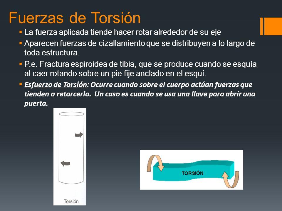 Fuerzas de Torsión La fuerza aplicada tiende hacer rotar alrededor de su eje Aparecen fuerzas de cizallamiento que se distribuyen a lo largo de toda e