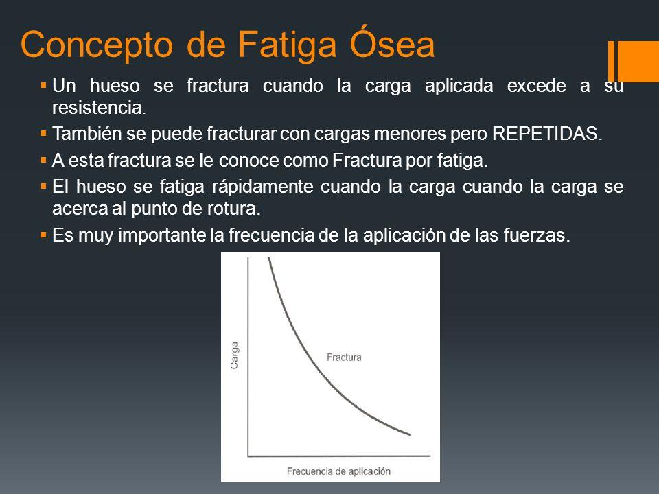 Concepto de Fatiga Ósea Un hueso se fractura cuando la carga aplicada excede a su resistencia. También se puede fracturar con cargas menores pero REPE