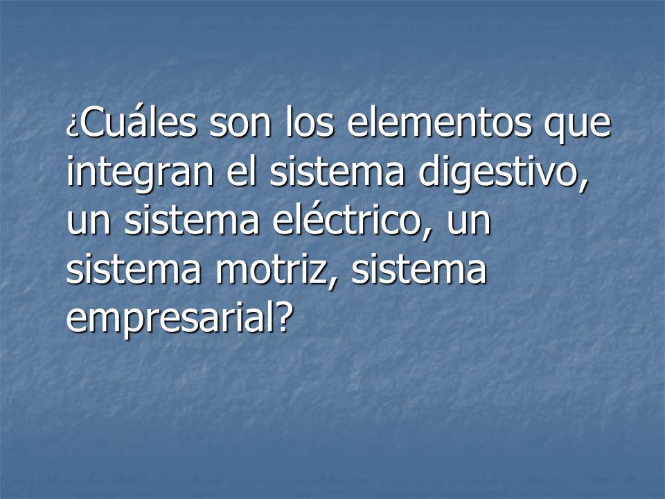 ¿ Cuáles son los elementos que integran el sistema digestivo, un sistema eléctrico, un sistema motriz, sistema empresarial?