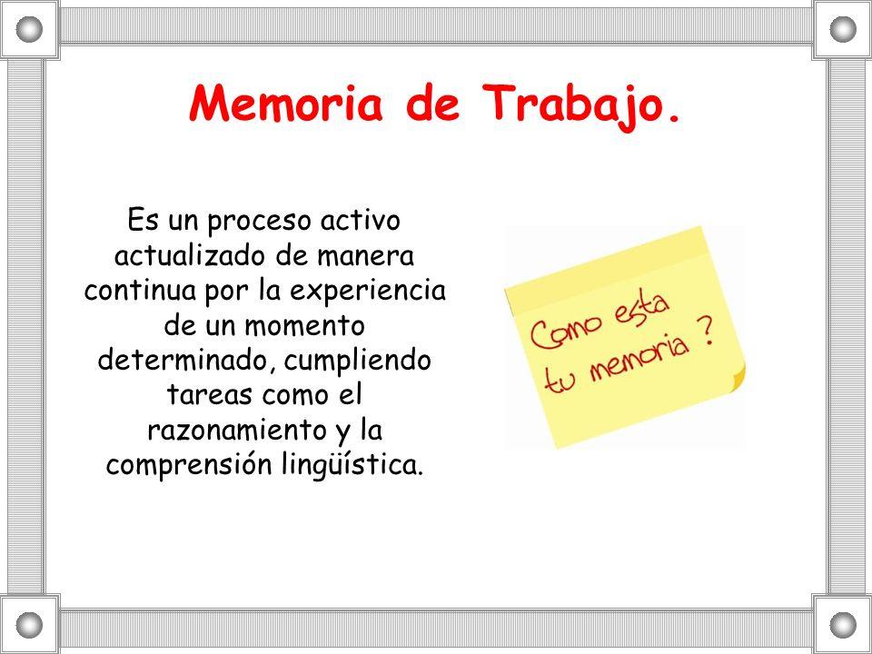 Memoria de Trabajo. Es un proceso activo actualizado de manera continua por la experiencia de un momento determinado, cumpliendo tareas como el razona