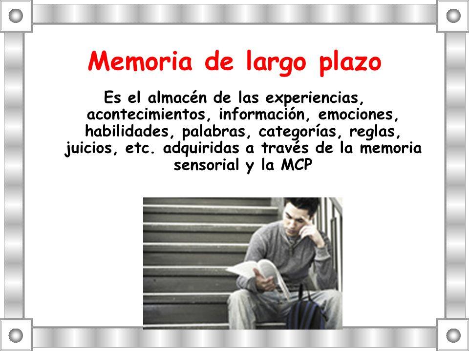 Memoria de largo plazo Es el almacén de las experiencias, acontecimientos, información, emociones, habilidades, palabras, categorías, reglas, juicios,