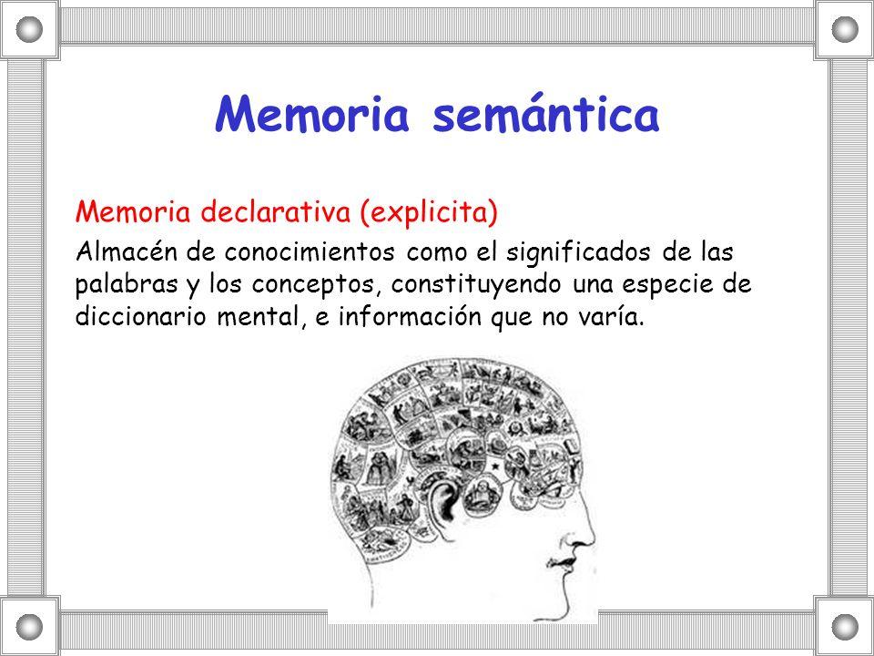 Memoria semántica Memoria declarativa (explicita) Almacén de conocimientos como el significados de las palabras y los conceptos, constituyendo una esp