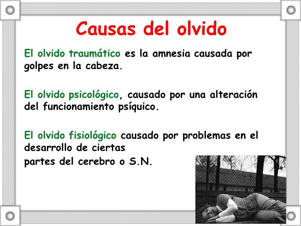 Causas del olvido El olvido traumático es la amnesia causada por golpes en la cabeza. El olvido psicológico, causado por una alteración del funcionami