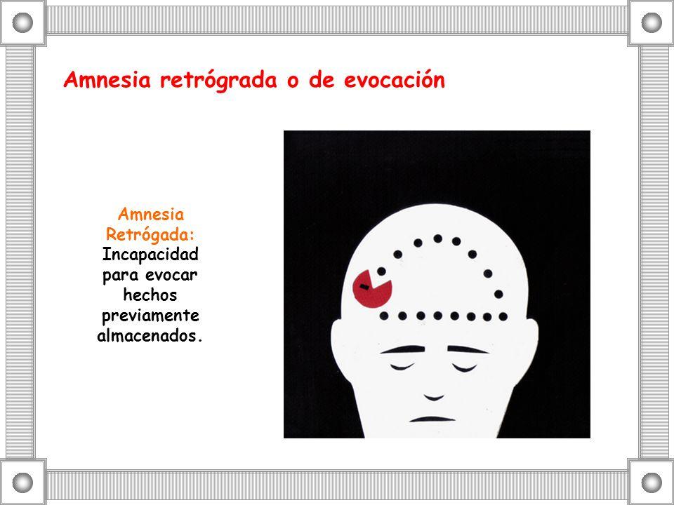 Amnesia retrógrada o de evocación Amnesia Retrógada: Incapacidad para evocar hechos previamente almacenados.