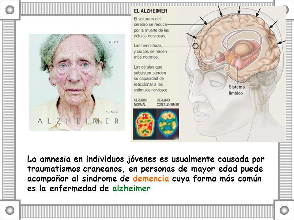 La amnesia en individuos jóvenes es usualmente causada por traumatismos craneanos, en personas de mayor edad puede acompañar al síndrome de demencia c
