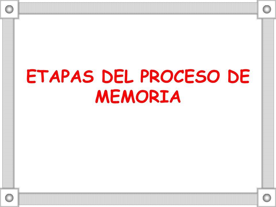 ETAPAS DEL PROCESO DE MEMORIA
