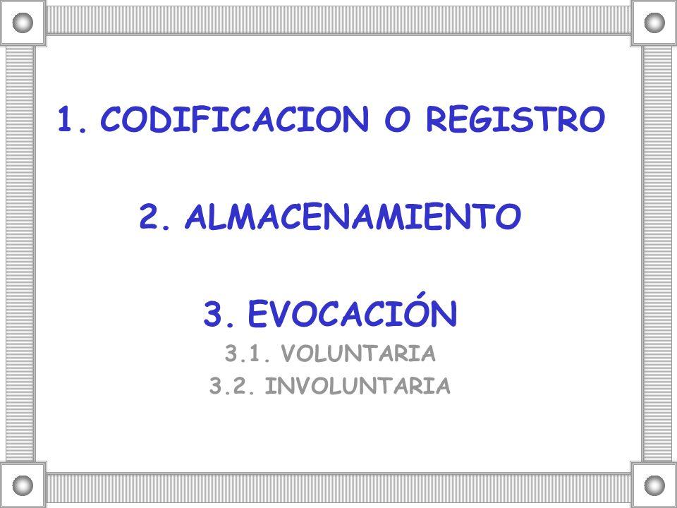 1.CODIFICACION O REGISTRO 2.ALMACENAMIENTO 3.EVOCACIÓN 3.1. VOLUNTARIA 3.2. INVOLUNTARIA