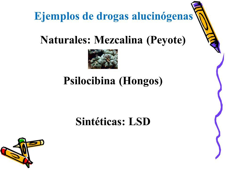 Ejemplos de drogas alucinógenas Naturales: Mezcalina (Peyote) Psilocibina (Hongos) Sintéticas: LSD