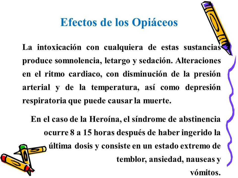 Efectos de los Opiáceos La intoxicación con cualquiera de estas sustancias produce somnolencia, letargo y sedación. Alteraciones en el ritmo cardiaco,