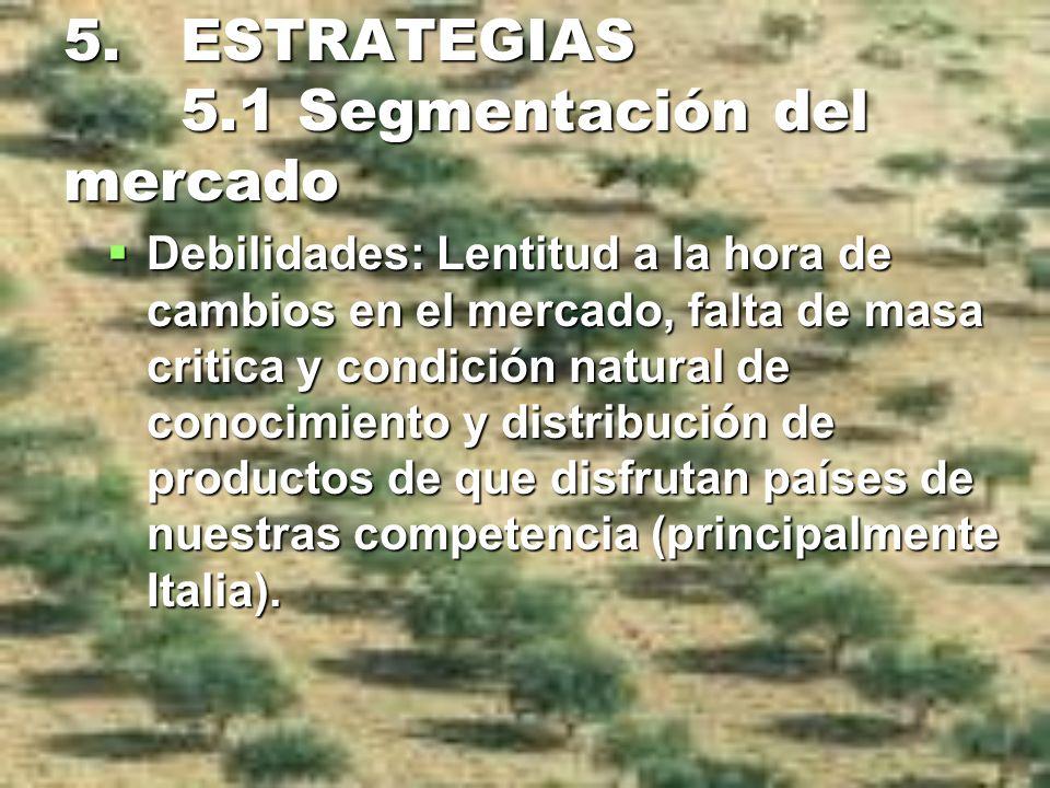 5. ESTRATEGIAS 5.1 Segmentación del mercado Debilidades: Lentitud a la hora de cambios en el mercado, falta de masa critica y condición natural de con